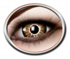 Kontaktlinsen Big Eyes Brown